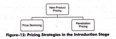 Pricing Strategies in the Introduction Stage