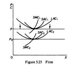 Decreasing-cost Firm