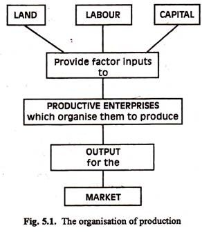 The Organisation of Production