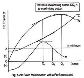 Sales Maxmimisation with a Profit Constraint