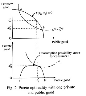Pareto optimality with one private and public good
