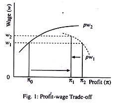 Profit-wage Trade-off